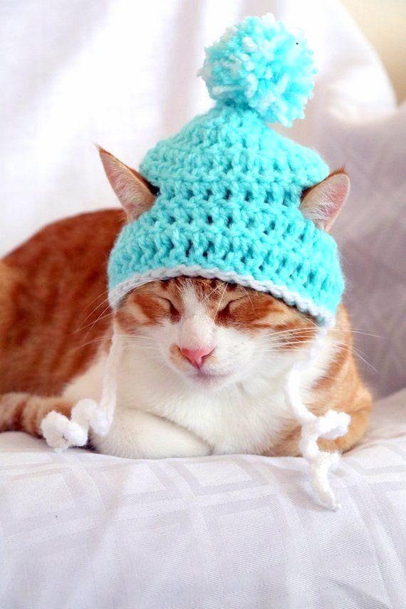 Cat Santa Hat Crochet Pattern Crochet Christmas Dog Hat Christmas
