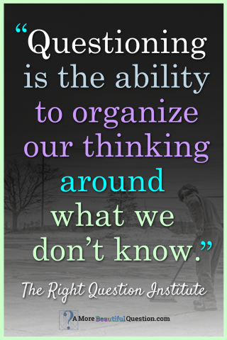 Questioning Is The Ability To Organize Our Thinking Around What We Interesting Quotes Questions