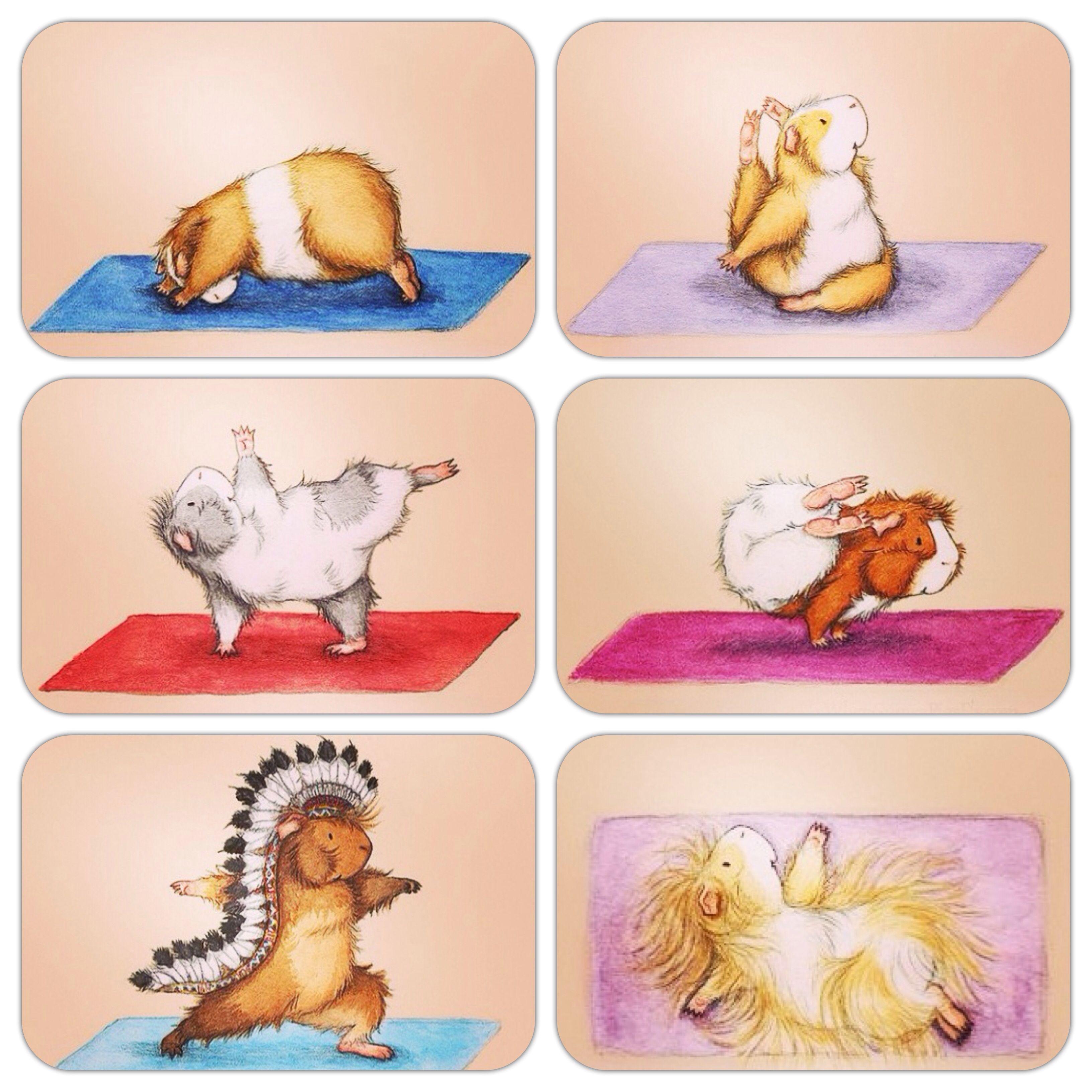 находится центре картинки йога милые гармонично сочетать цвета