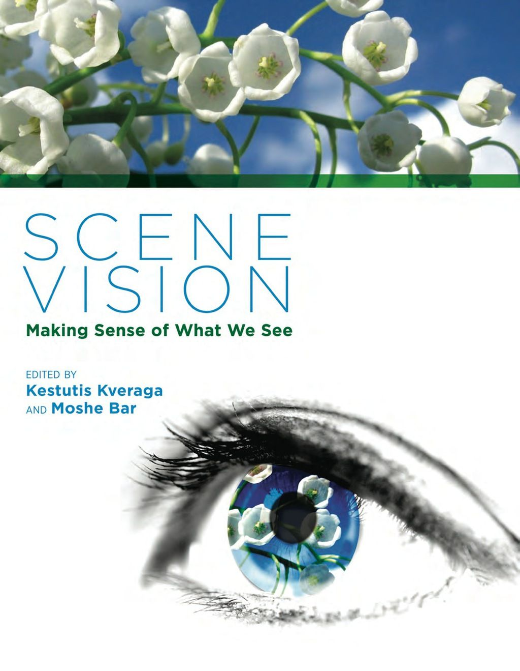 Scene Vision (eBook) | Scene, Books