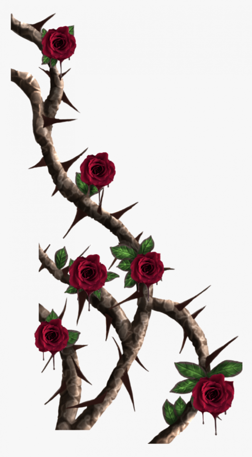 11 Things You Should Know About Cartoon Rose Vine Cartoon Rose Vine Www Flower Cartoon Rose Vine Wwwflower Rose Vines Rose Vine Tattoos Cartoon Rose