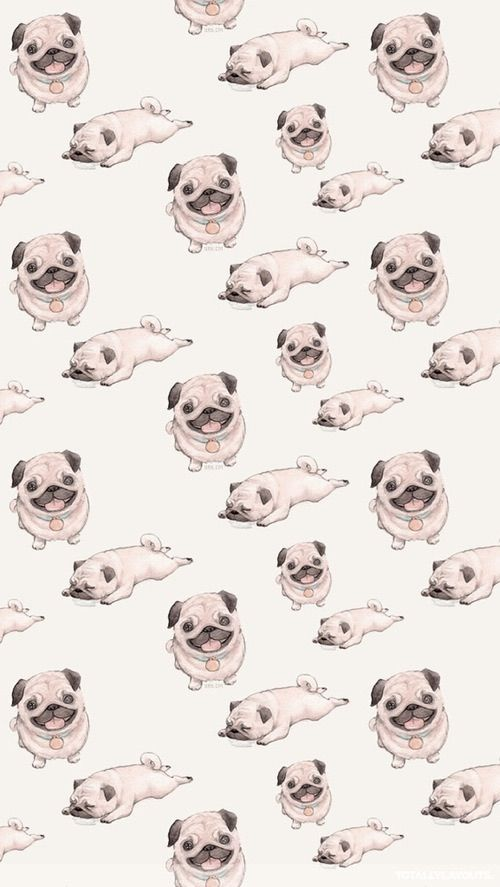 Background Tumblr Pug Wallpaper Dog Wallpaper Cute Wallpapers