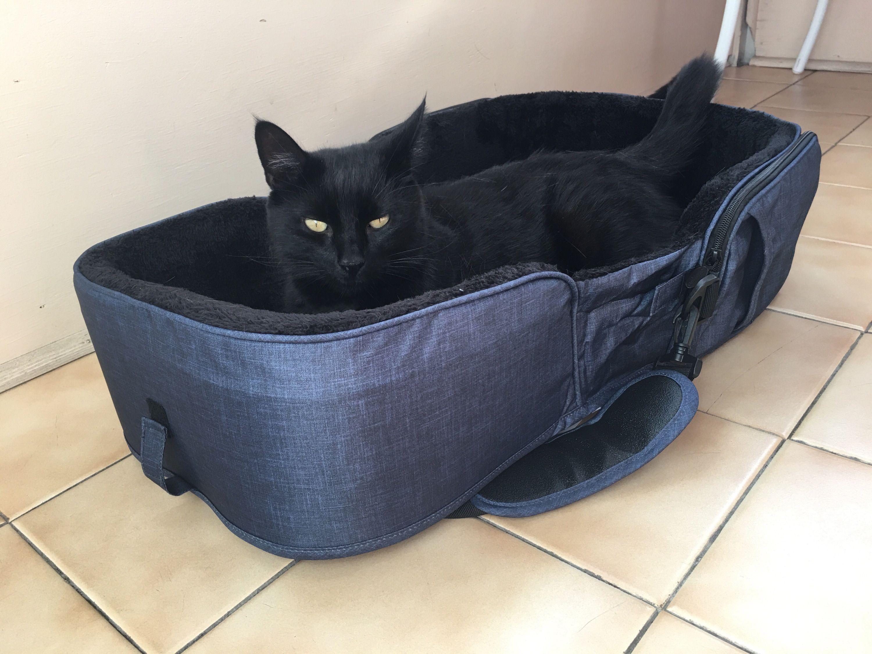 Product Review Gen7 Traveler Portable Pet Bed Petguide Pet Bed Pets Pet Friendly Hotels