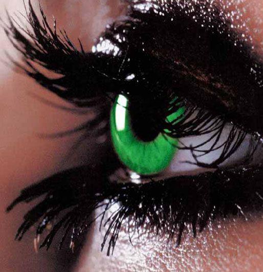 Les 25 meilleures id es de la cat gorie lentilles vertes - Cuisiner les lentilles vertes ...