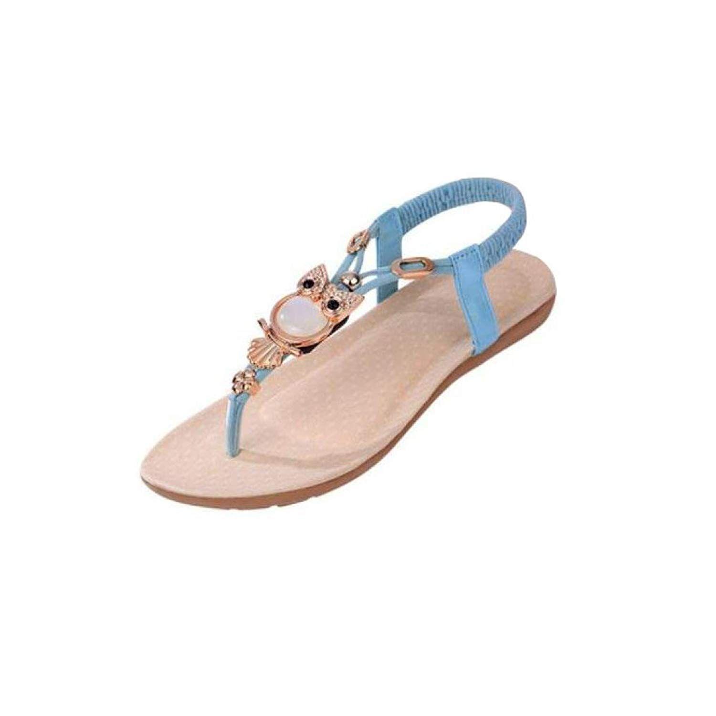 b6602f98bd077 RAISINGTOP Dressy Women Rhinestone Owl Sweet Sandals Clip Toe Thong Sandal  Dress Beach Shoes Comfortable Elegant
