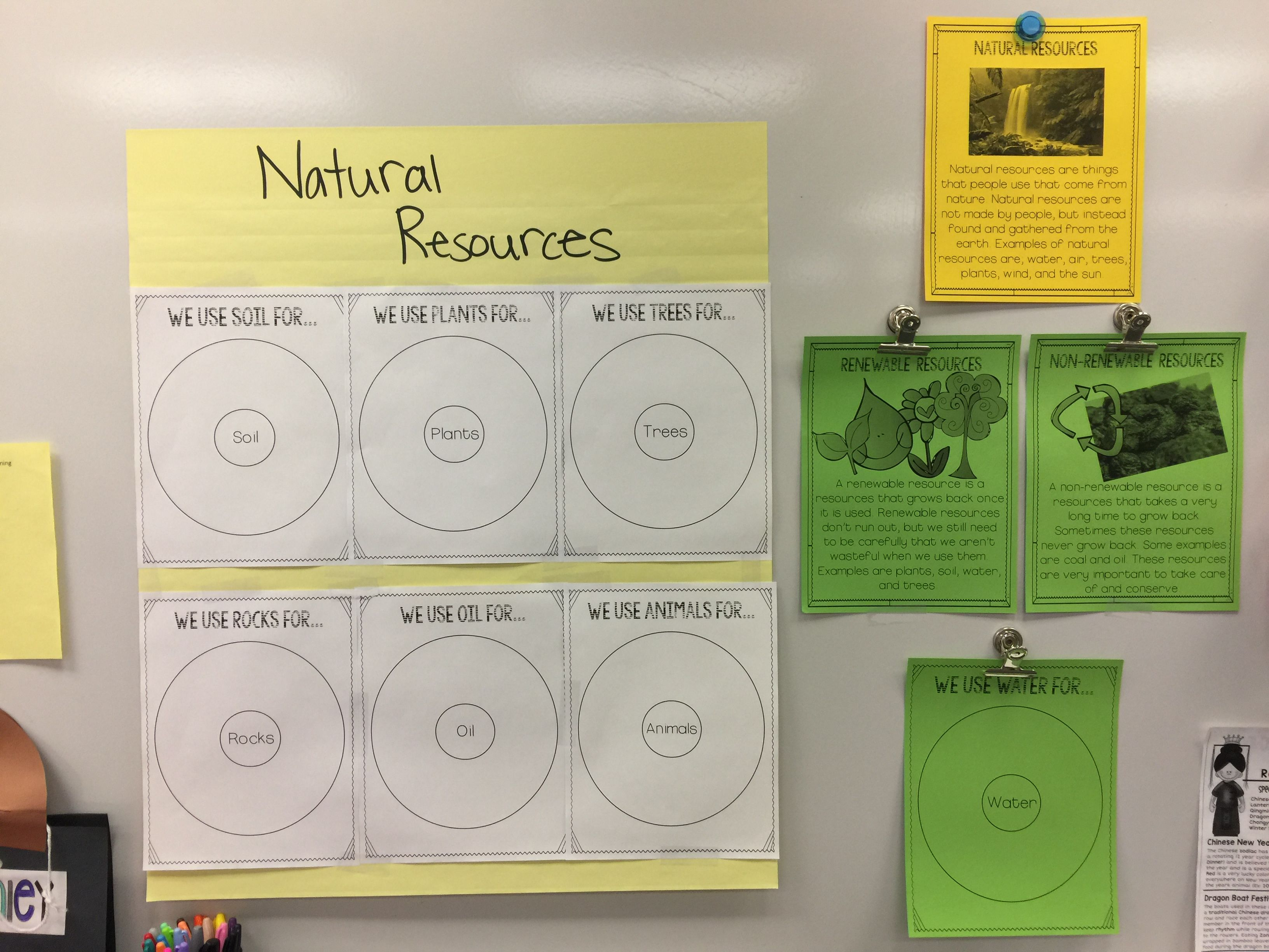Natural resources. 2nd grade classroom, Trees to plant