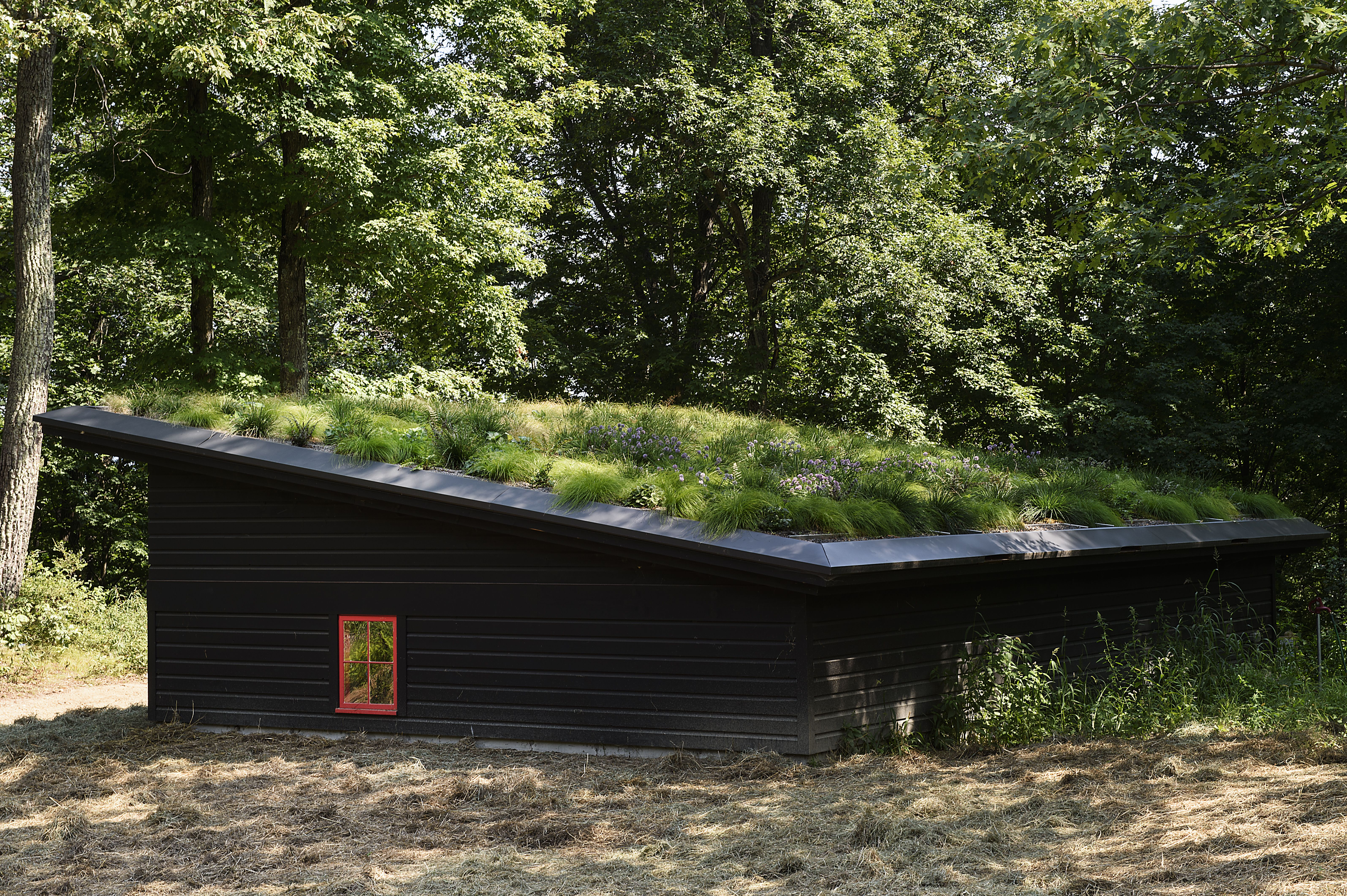 17 Ideas About Living Roof DIY For Your House