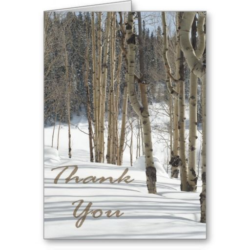 Aspen Woods in Snow Christmas Thank You Greeting Cards