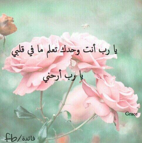 صور كلمات دعاء يا رب ارحني Sowarr Com موقع صور أنت في صورة Flower Photography Art Pink Rose Pictures Flowers Photography