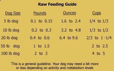 Free raw dog food recipes book review pets pinterest raw dog free raw dog food recipes book review forumfinder Gallery