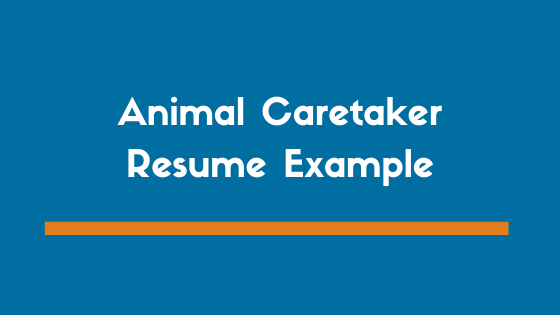 Animal Caretaker Resume Example 3 Expert Tipsyour Complete Guide On How To Write An Animal Caretaker Resume A Profes Resume Examples Executive Resume Resume