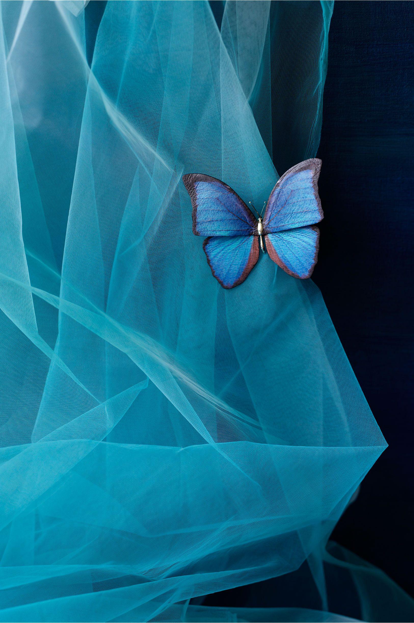 Something Blue #blue