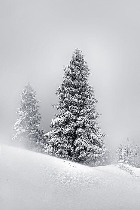 Winter scene, #snow