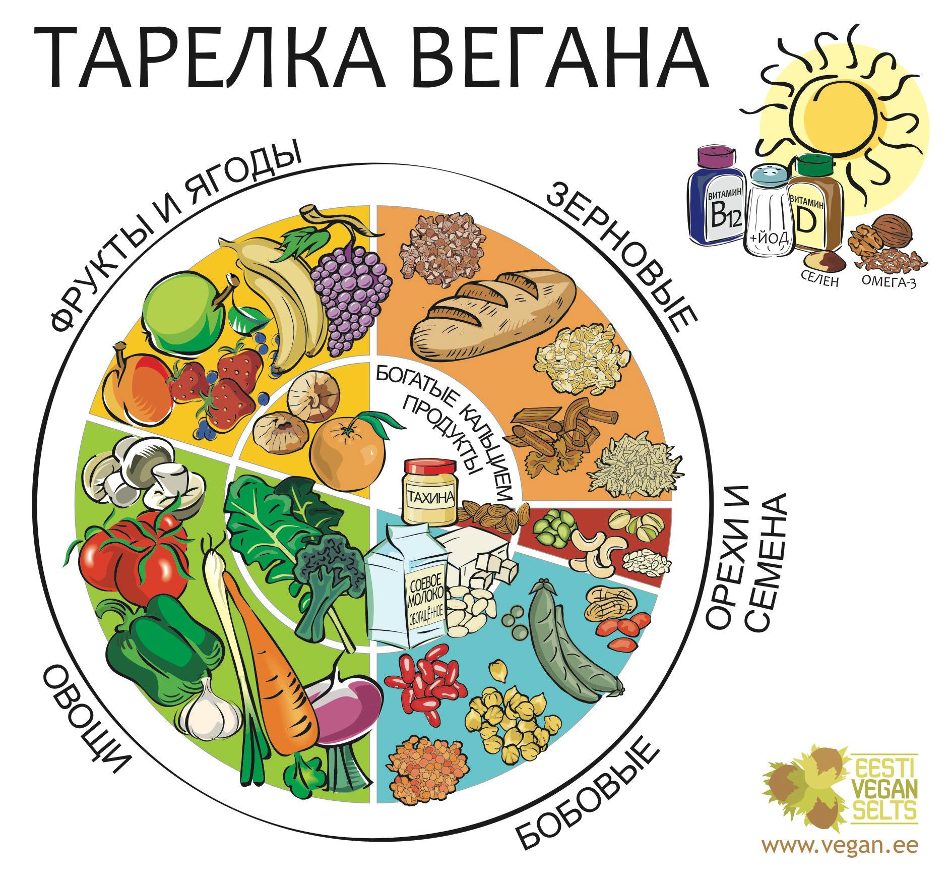 Вегетарианская диета какие продукты