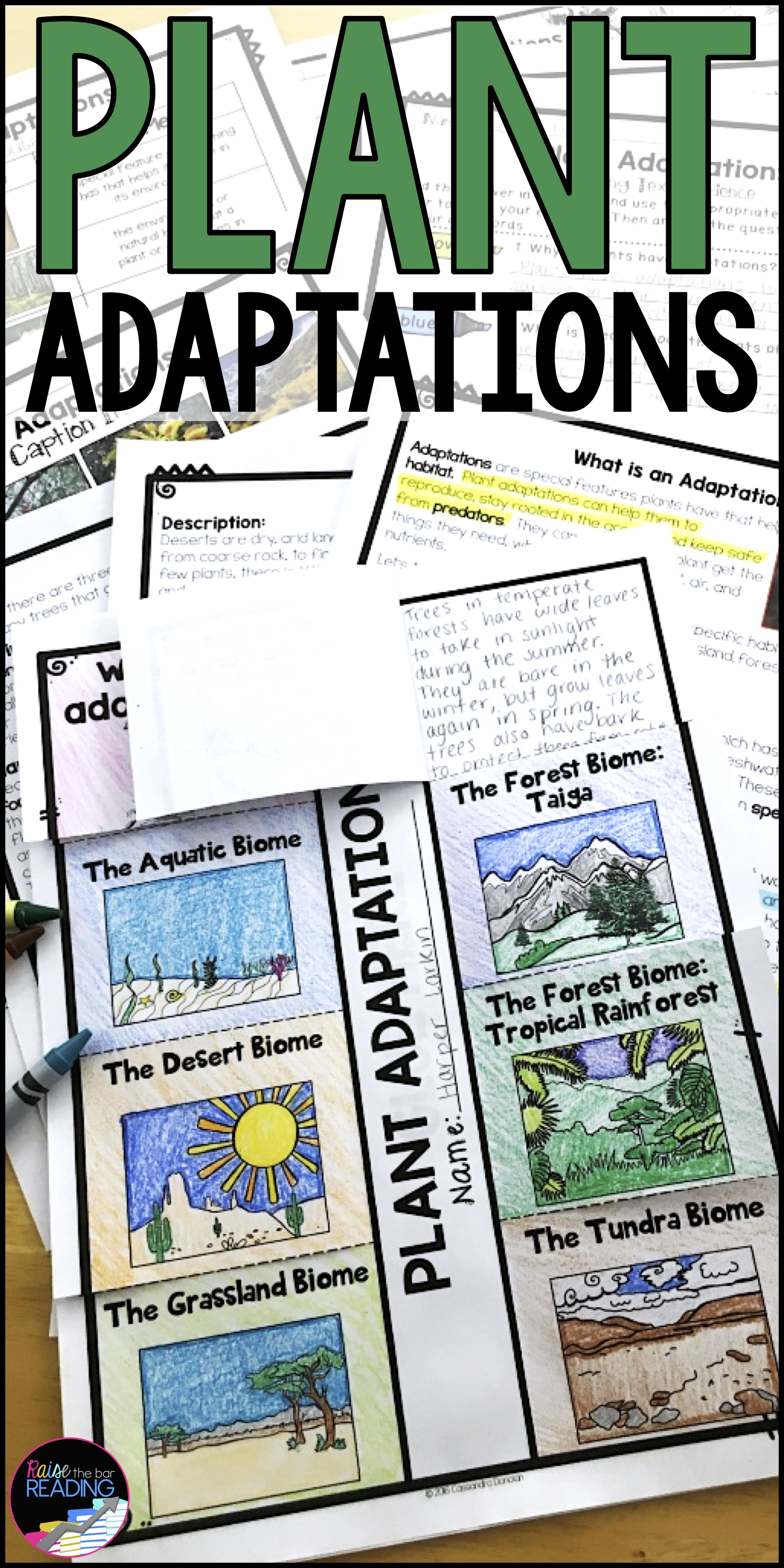 Differentiated Plant Adaptations Reading Passages Vocabulary Comprehension Plant Adaptations Reading Passages Reading Nonfiction Texts [ 5400 x 2700 Pixel ]