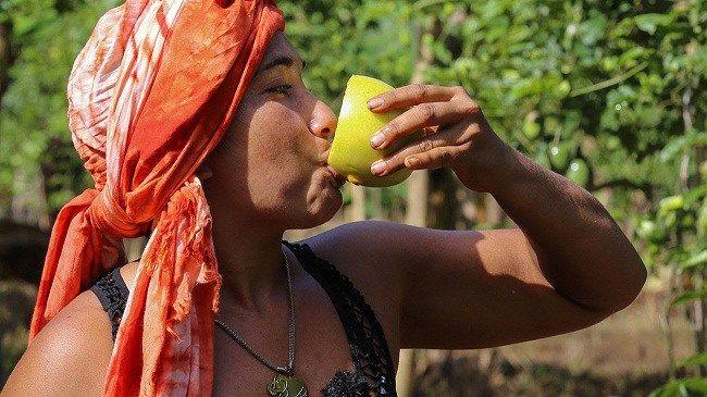 Más de 1,600 productores en Samaná han recibido financiamiento del Banco Agrícola