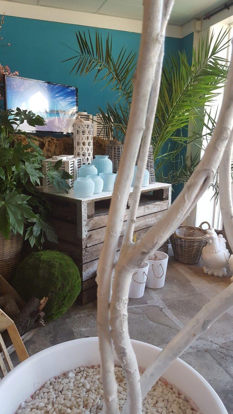 C O N C E P T S T O R E  Cote D'Azur is Open!!  Laat je onderdompelen in de Franse Sfeer.... Haal lekker het zomergevoel in je huis of tuin.  Maak je terras gezellig met een super keuze aan windlichten, lantarens enz.  Salut!!!!