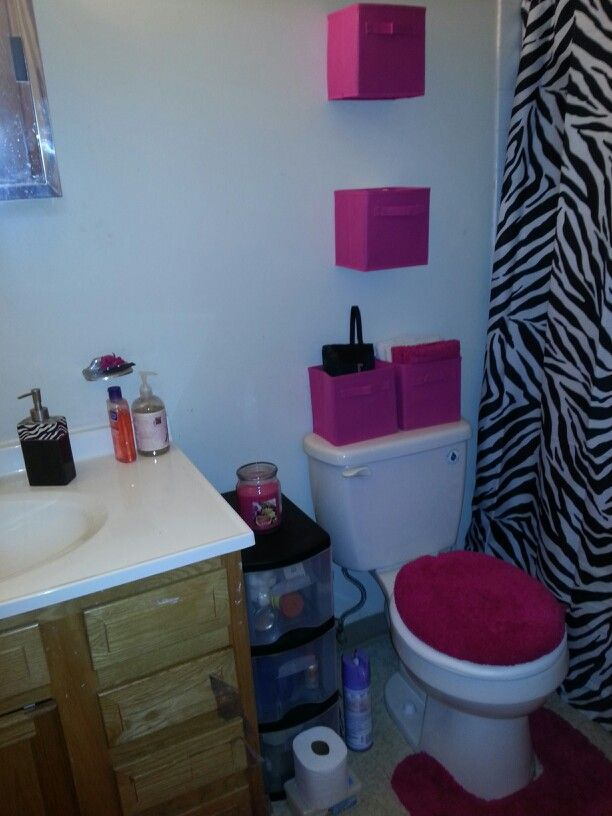 Superieur Hot Pink And Zebra Bathroom