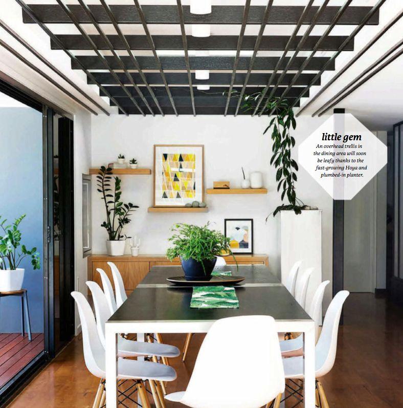 Ceiling Trellis Living Wall Indoor Indoor Trellis Living Wall