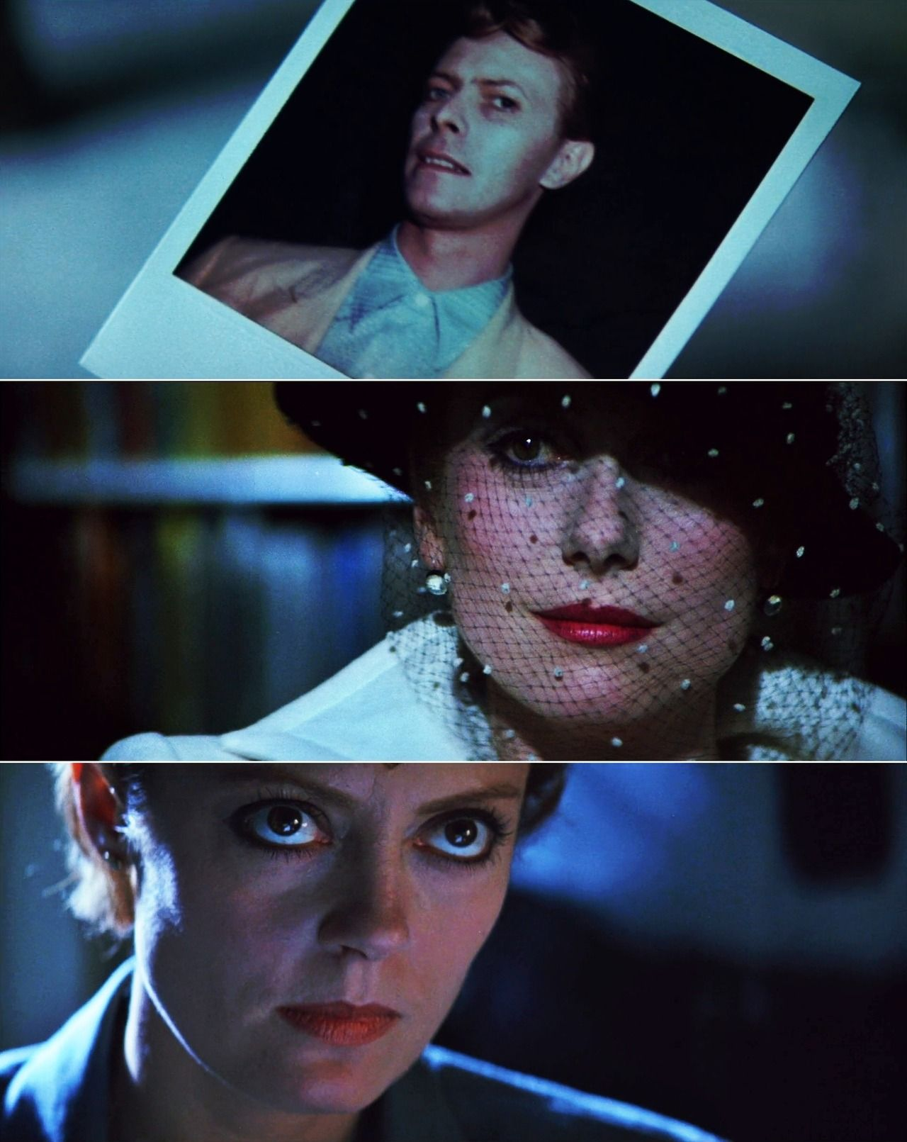 The Hunger 1983 Catherine Deneuve David Bowie And Susan Sarandon Susan Sarandon Catherine Deneuve David Bowie