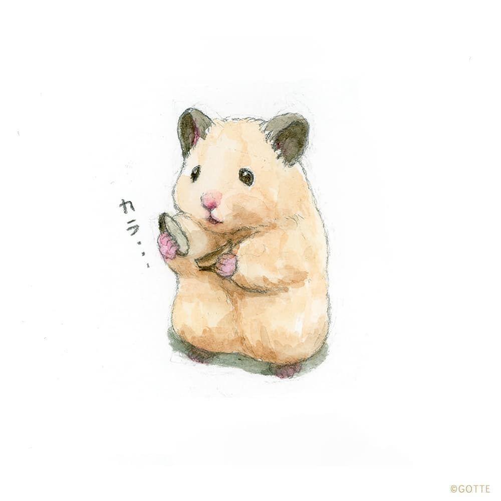 Gottehamster Painter On Instagram Furious Hamsterlife Hamster Hamstergram Art Hamsters P Cute Hamsters Cute Baby Animals Cute Animals