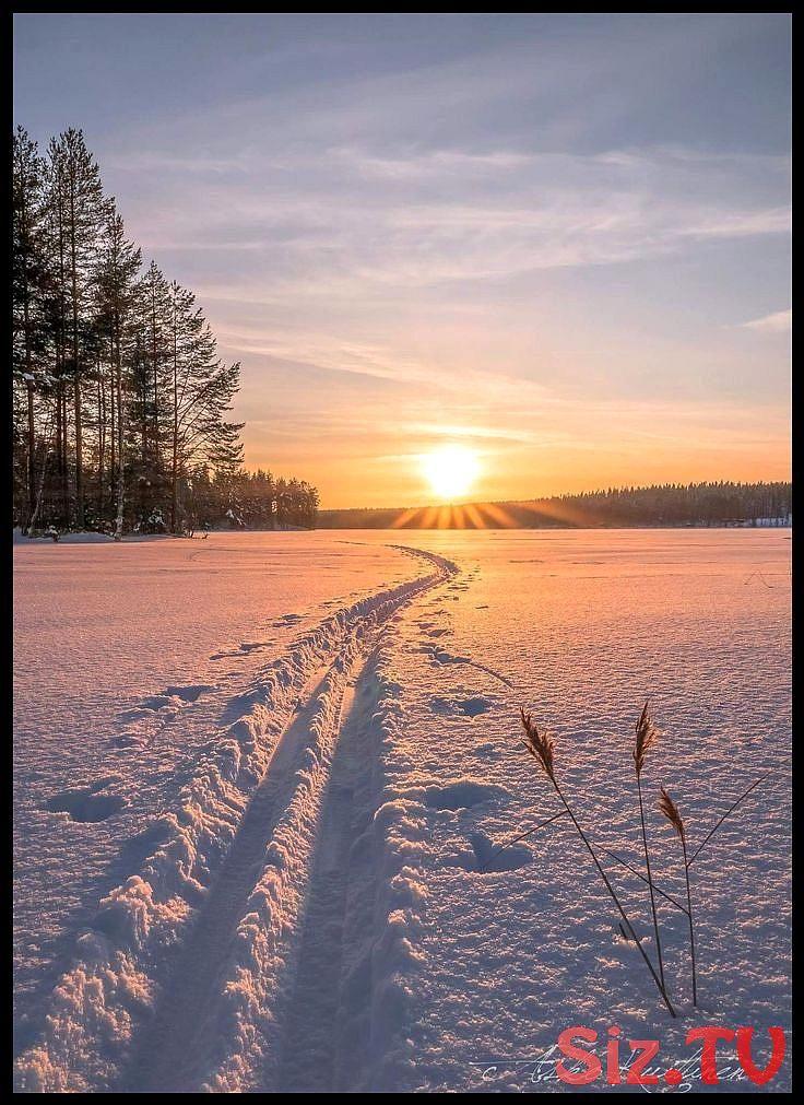 Verschneiter Sonnenaufgang | #Winter #Schnee #Winterwunderland #Winterfotografie – #Schnee,  …