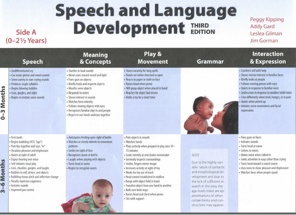 language development and the surrounding issues Many questions and answers about cultural issues can be seen in the disappearing language due to personal development than there is.