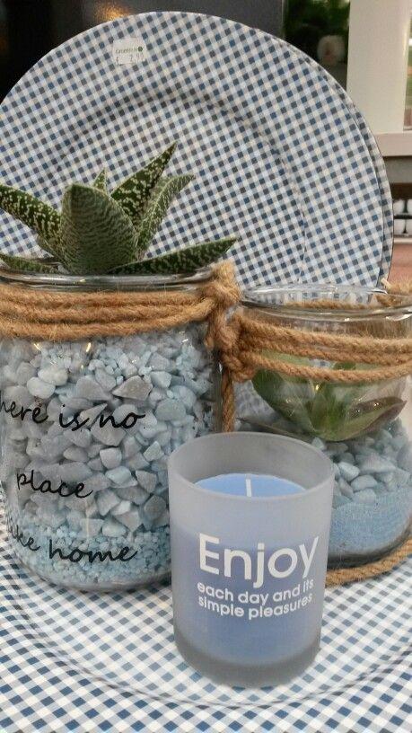 Succulenten compositie in glas met blauw grind.