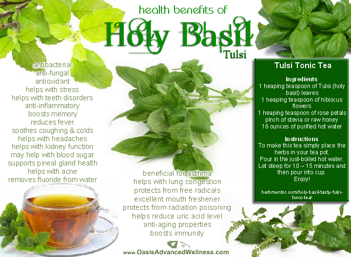top 10 herbs and spices with explanation of health benefits