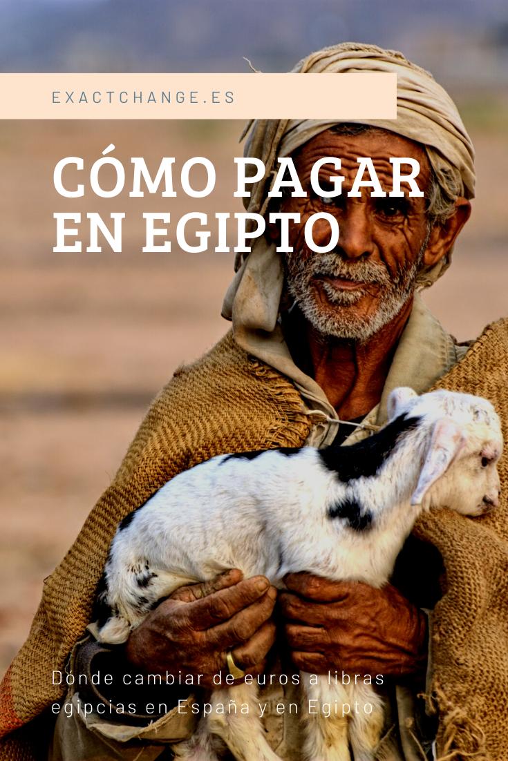 💸 Dinero en Egipto: Pagar en efectivo con libras o con tarjeta, y dónde es  mejor cambiar de euros a libras egipcias en España y E… en 2020 (con  imágenes)   Libra