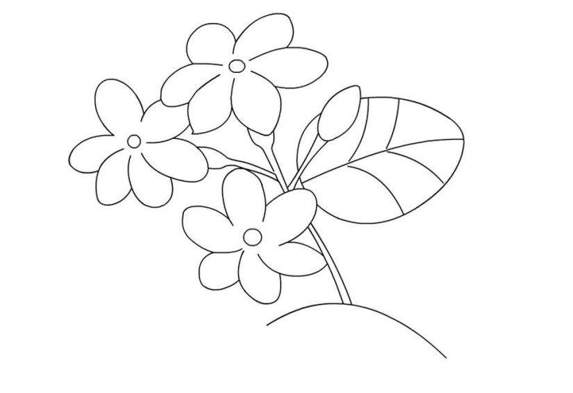 Gambar Bunga Sederhana Untuk Anak Tk Di 2020 Bunga Kartun Gambar