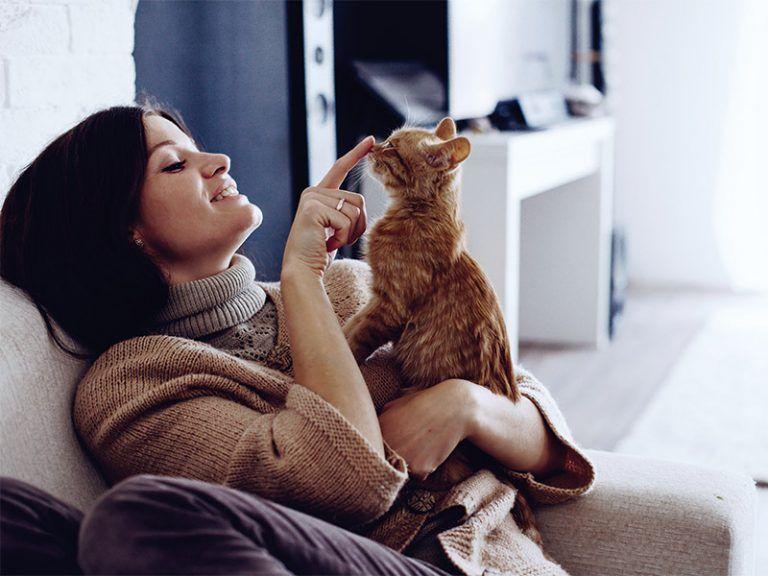 Bien vivre avec un chat qui a ses griffes Magazine l