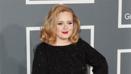 Adele creating an eco-friendly beach pad