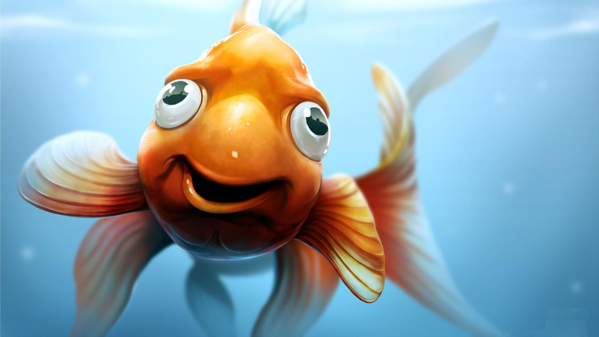 Funny 3D Cartoon Backgrounds Download Free Goldfish