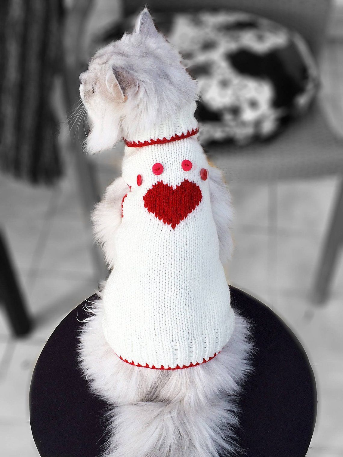 Heart Paw Pattern Cat Sweater, Sphynx cat clothes, Sphynx