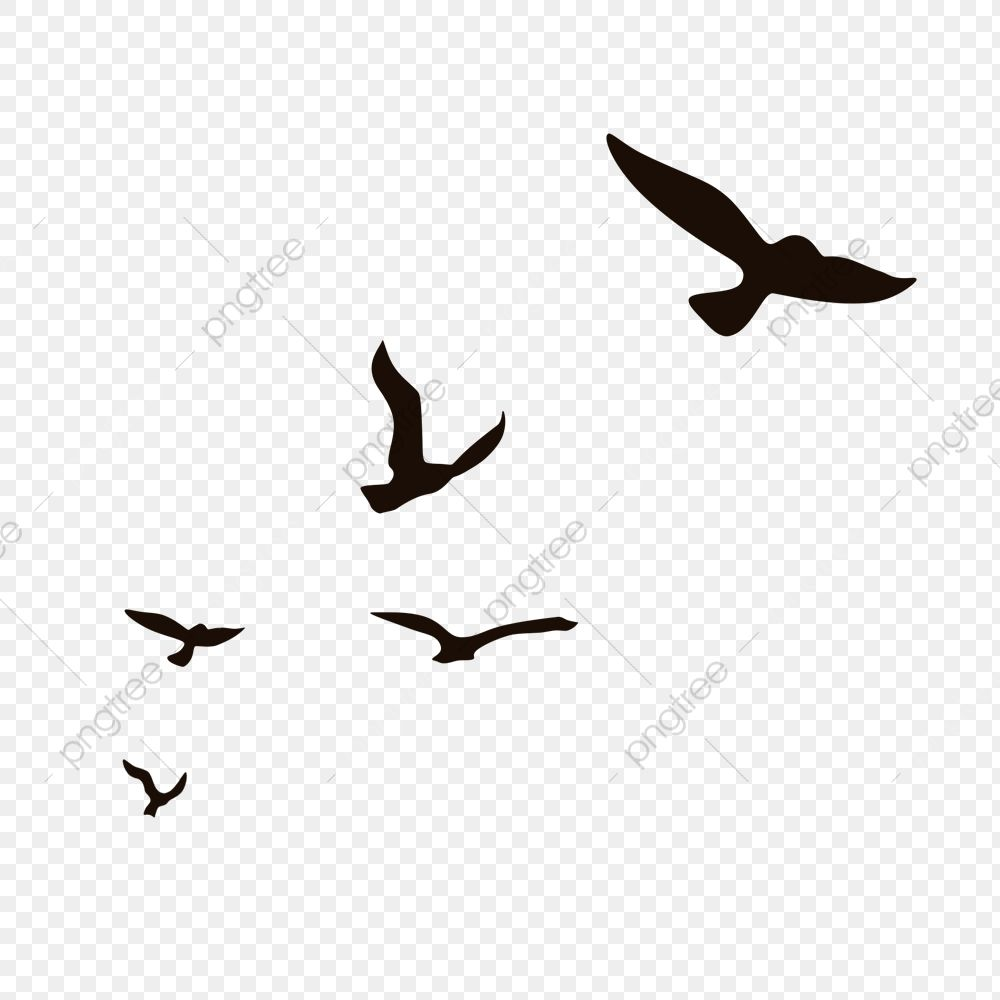 Aerial Fly Little Bird Silhouette A Flock Of Birds Flying Seagull Wild Goose Png Transparent Clipart Image And Psd File For Free Download In 2020 Flying Bird Silhouette Bird Silhouette Birds Flying