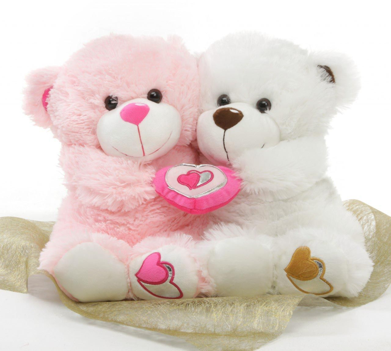 Adorable Teddy Latest Hd Wallpapers Free Download New Hd Android