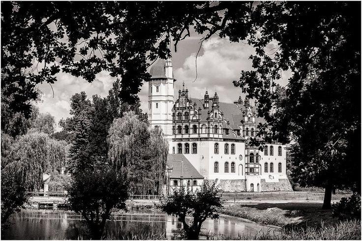 Il Castello di Basedow è uno storico edificio della cittadina tedesca di Basedow, nel Meclemburgo-Pomerania Anteriore, costruito sulle sponde del Lago di Malchin tra il XVI e il XIX secolo.