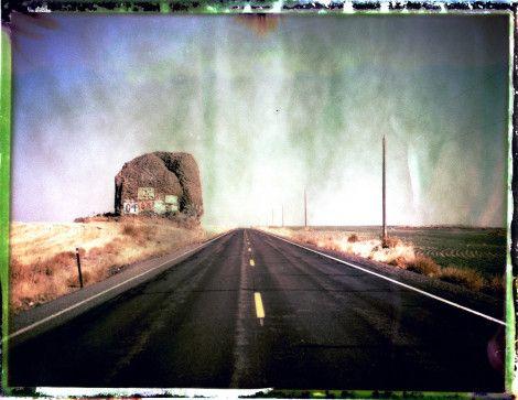 Camera: Polaroid 250 Land Camera || Film: Fuji FP-100C (reclaimed negative scan)