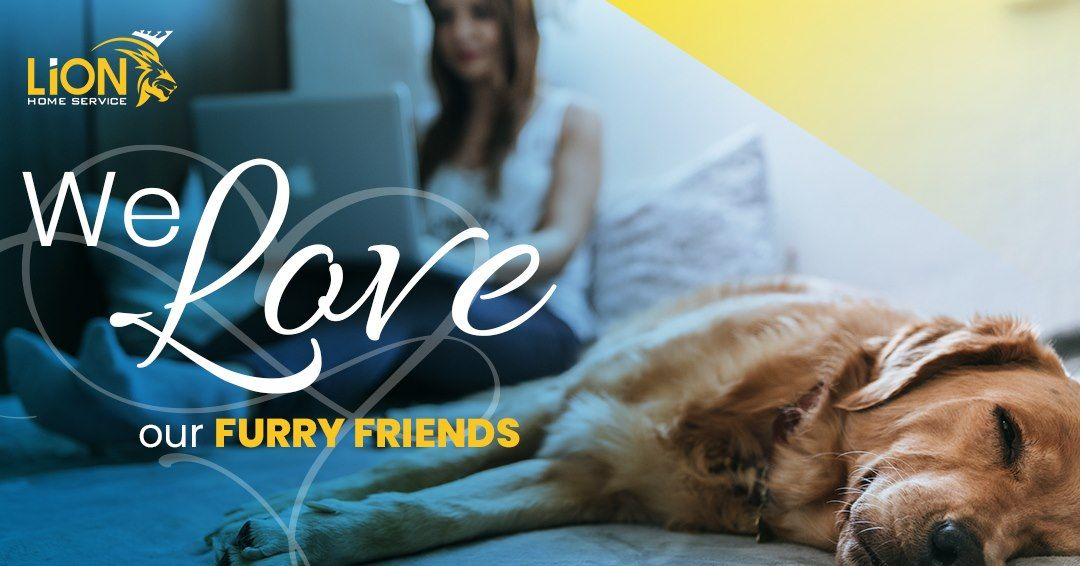 Our Pets Are Our Best Friends But They Aren T Your Hvac S To