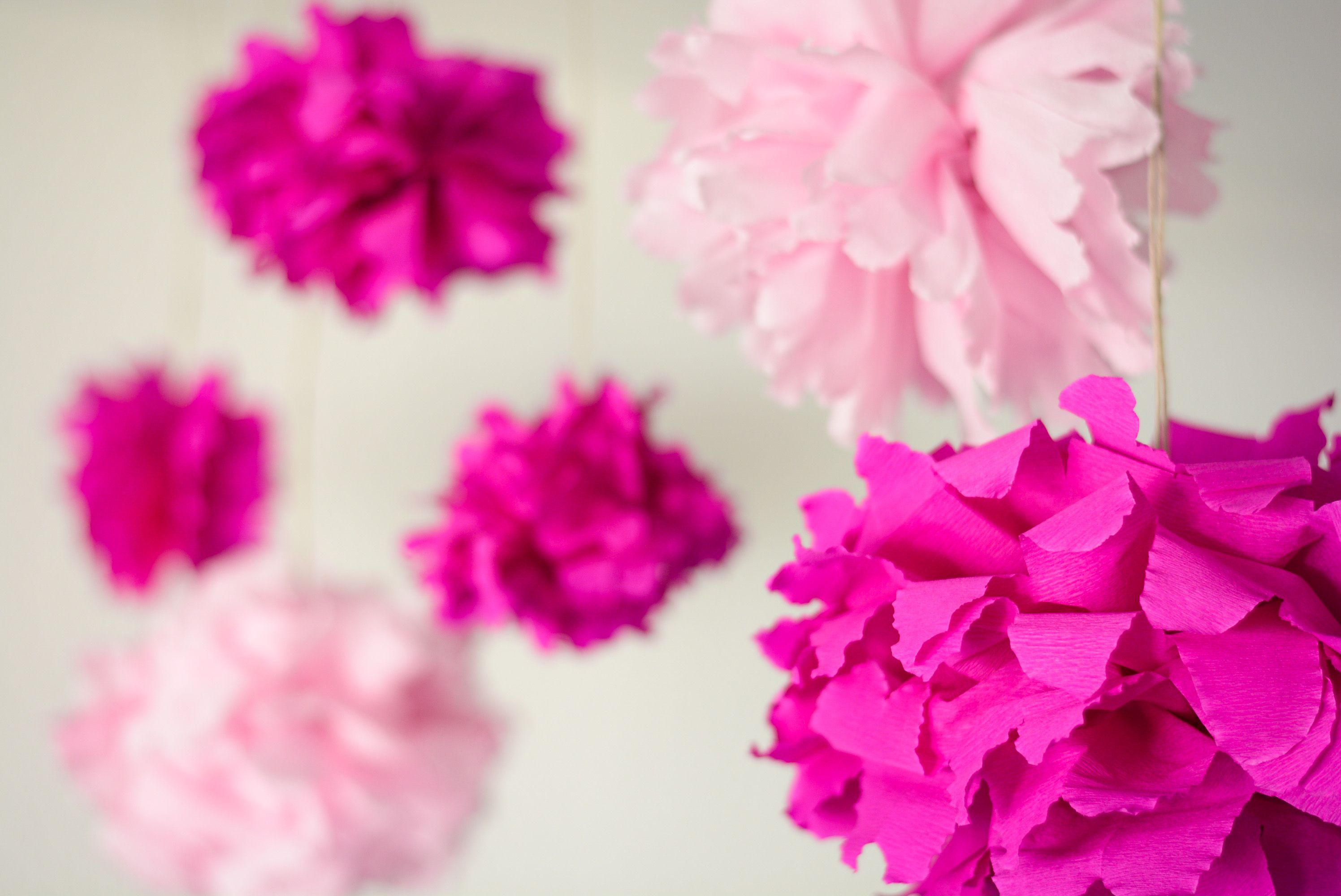 A Real Princess Room Needs Pink Pom Poms With Images Pink Pom Poms Real Princess Pink