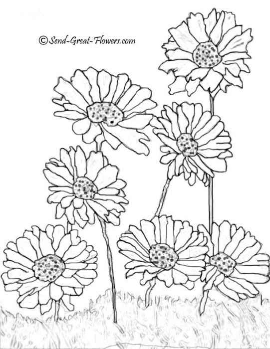 Coloring Page Flower Coloring Pages Summer Coloring Pages Coloring Pages