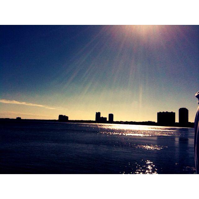 Dealchicken Tampa - Bayshore