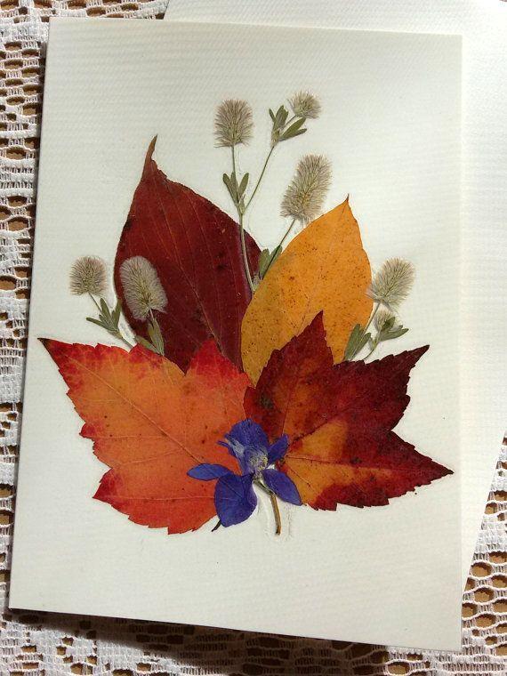 Сухие листья открытка