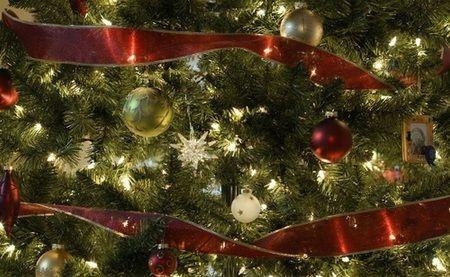 Christmas Tree - balls, beautiful, pretty, tree, beauty, xmas, magic