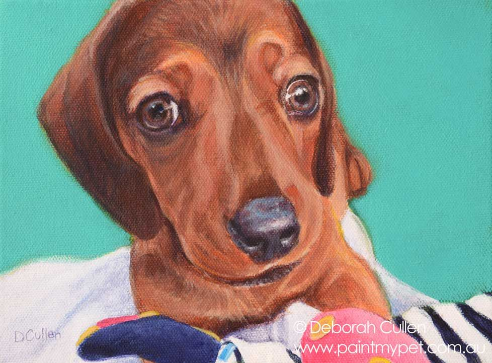Jasper Miniature Dachshund Dog Portrait Paintmypet Pet