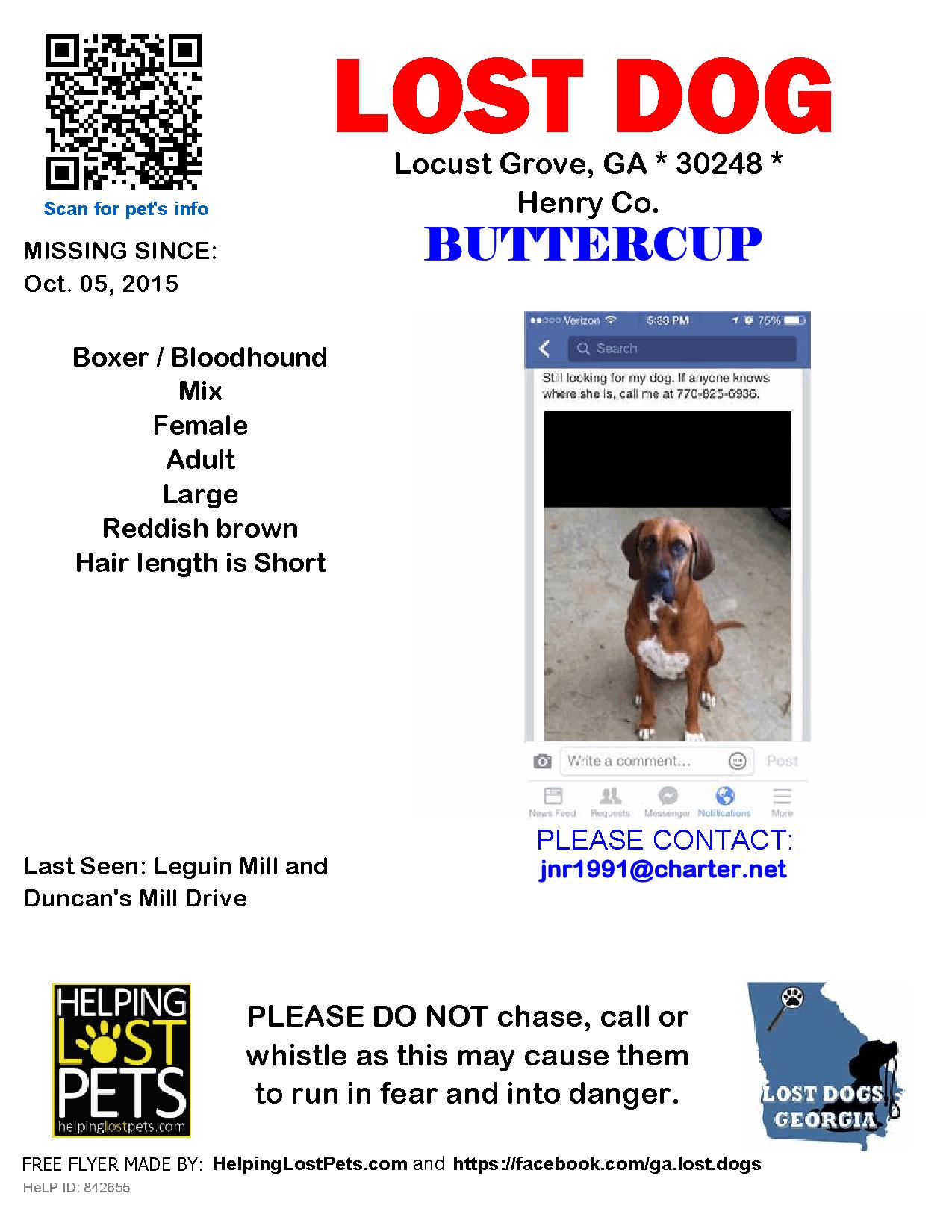 Lost Dog - Boxer - Locust Grove, GA, United States