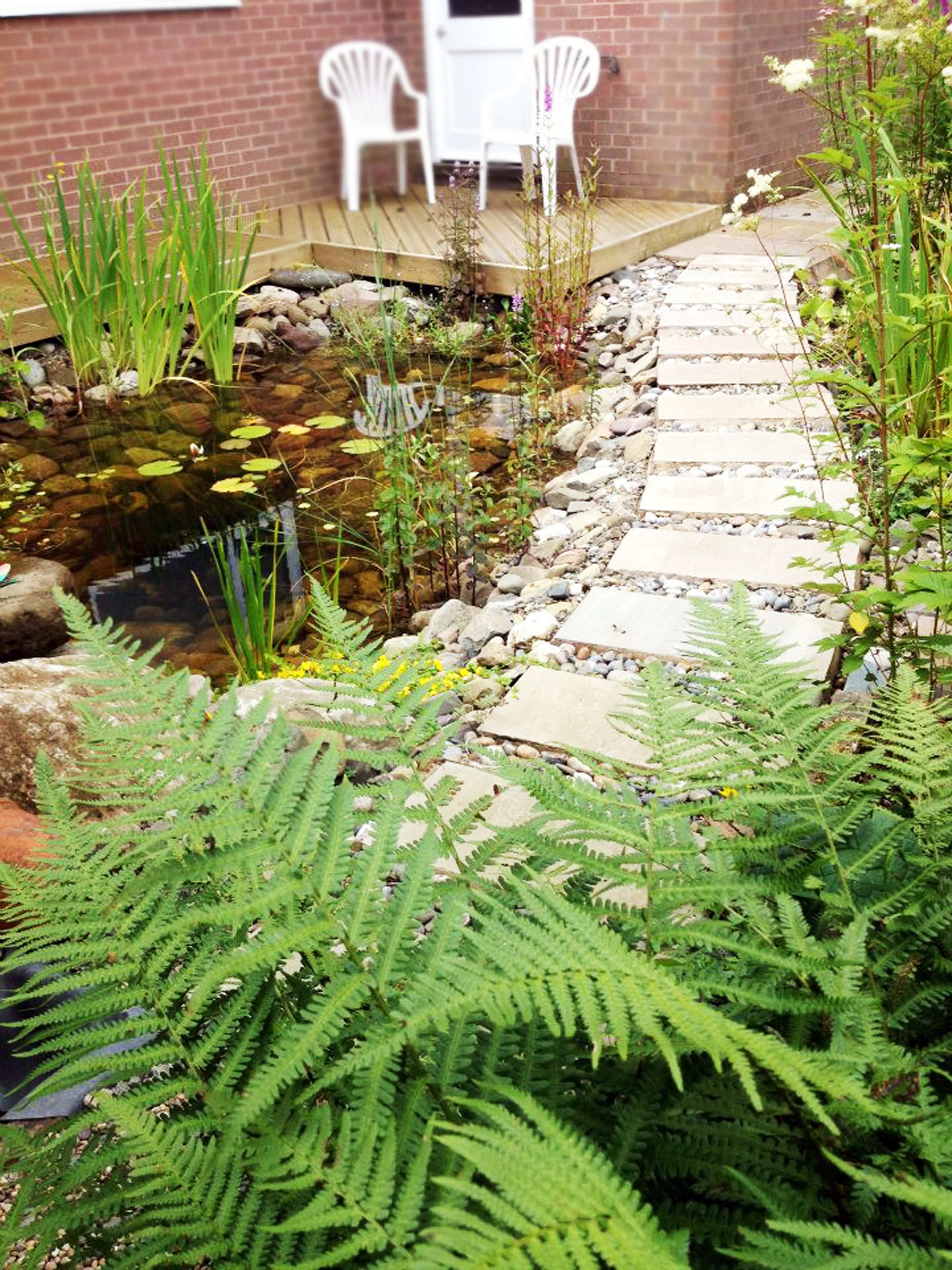 Wildlife pond for Fish pond ideas uk