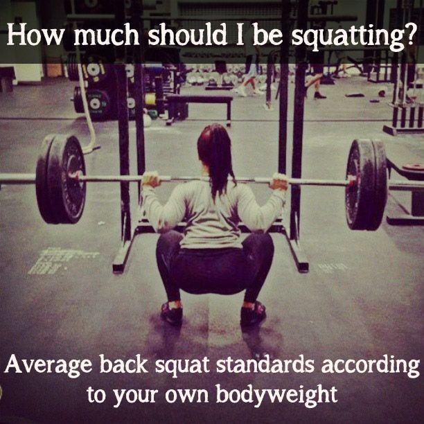 Average Back Squat: Compare Your Progress - Cody App   Booty