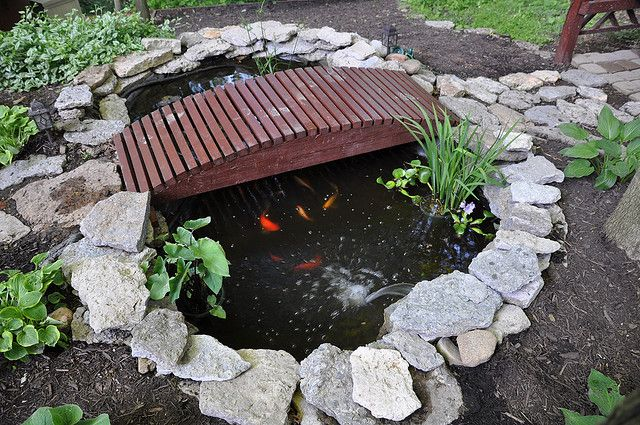 Small ponds for your cozy home garden cozy home plans for Small pond house plans
